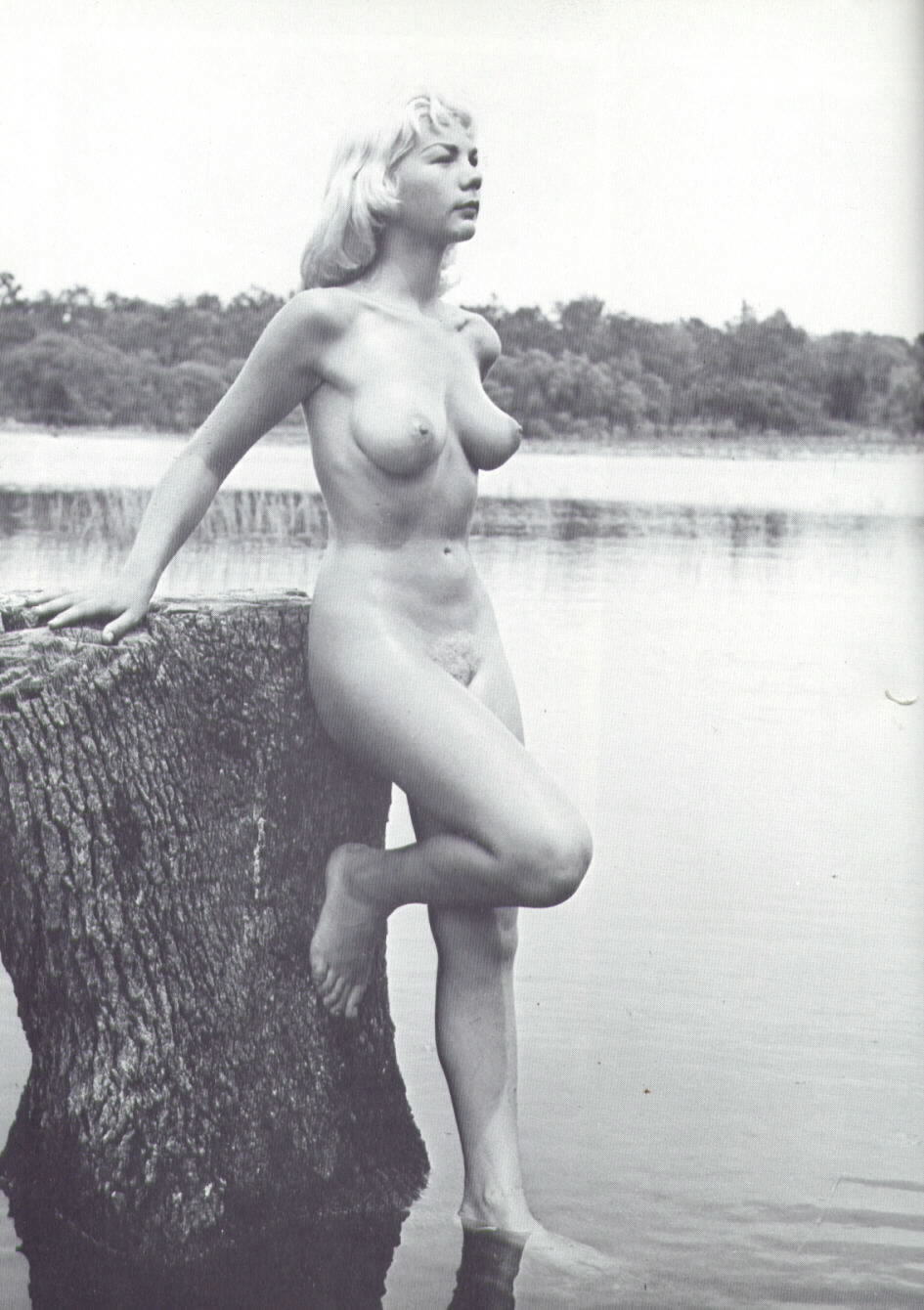 Nude vintage exposed picture